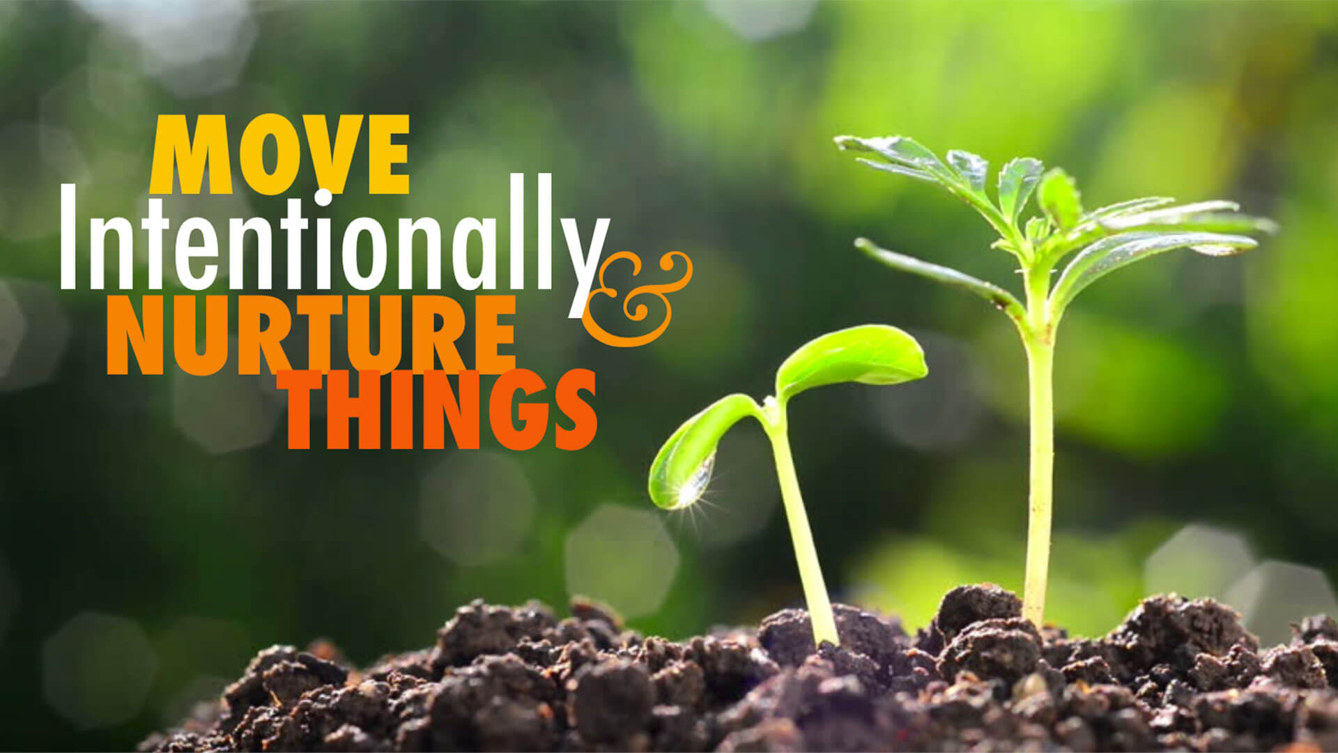"""a seedling with the words """"Move intentionally and nurture things"""""""